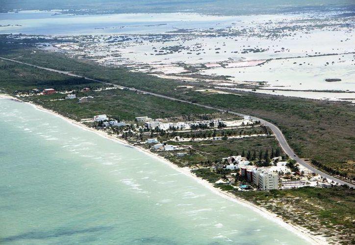 En la franja costera de Yucatán se impulsan diversos proyectos inmobiliarios. (Milenio Novedades)