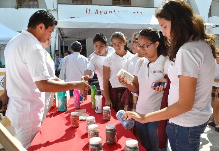 Promueven el reciclaje y sus usos en el Ayuntamiento de Benito Juárez. (Redacción/SIPSE)