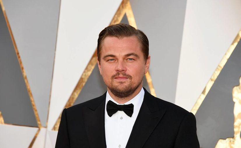 Leonardo Di Caprio logró por fin hacerse con el Oscar a Mejor Actor. Su papel en 'The Revenant' logró convencer al exigente jurado de la Academia. (AP)