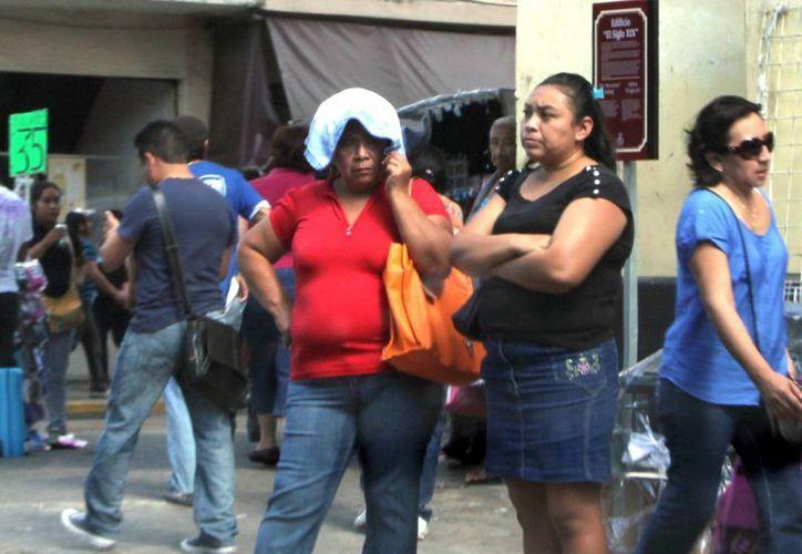 Continuarán en Mérida las temperaturas cálidas al mediodía. (José Acosta/SIPSE)