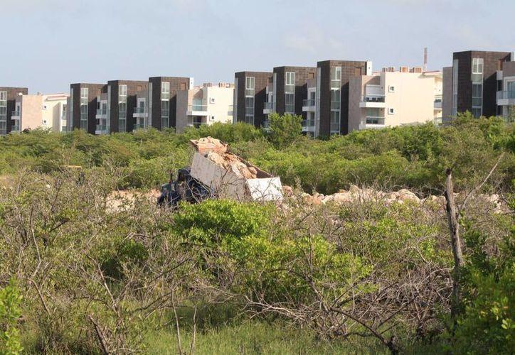 La Profepa pidió al denunciante del relleno de manglar en terrenos del hotel Grand Corla, más datos. (Adrián Barreto/SIPSE)