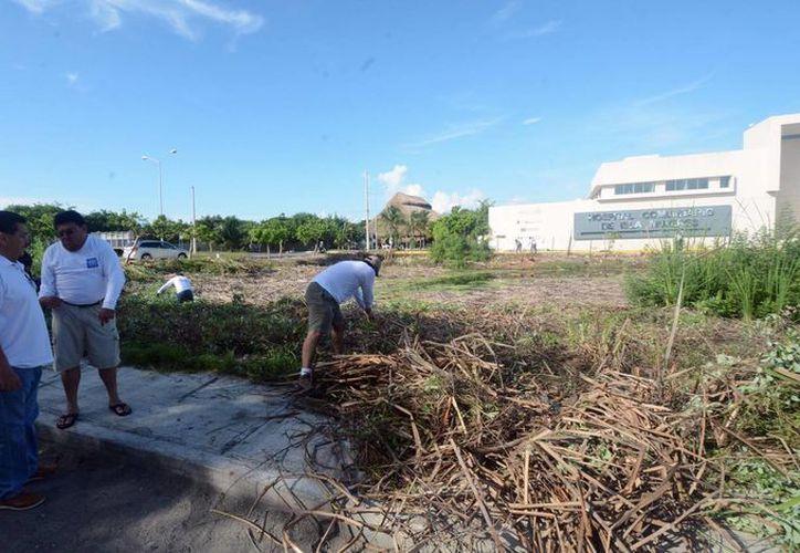 Empleados de gobierno y voluntarios trabajan para acabar con los criaderos de moscos. (Cortesía/SIPSE)