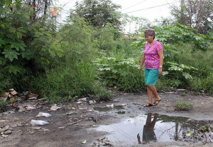 Llaman a la sociedad a contribuir y eliminar los criaderos de moscos. En la imagen una mujer cerca de un charco de agua. (Milenio Yucatán)