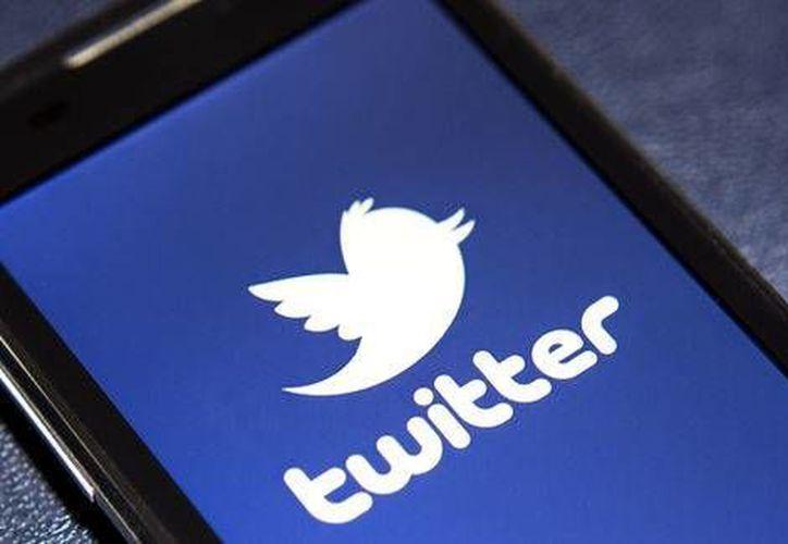 La utilidad de Twitter no sólo se remitiría al aspecto criminal, sino al electoral y sanitario. (shutterstock.com)