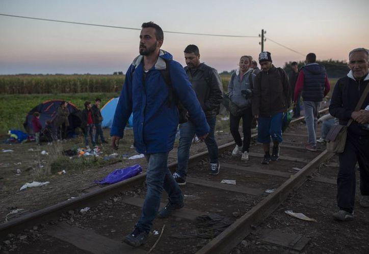 Cientos de miles de migrantes escapan hacia Europa de la devastación de la guerra y conflictos sociales en Oriente Medio. (AP)