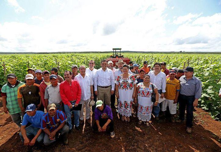 """El gobernador Rolando Zapata con trabajadores en la Unidad Agrícola """"San Rufino"""", de la comisaría de Nohalal, en Tekax, a donde acudió para verificar los avances en el uso de sistemas de riego. (Milenio Novedades)"""