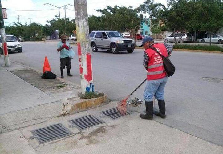 Los trabajos de limpieza se realizaron en la Supermanzana 20; 22; 24; 25; 43; 46; 48; 50 y en avenidas principales. (Tomás Álvarez/SIPSE)