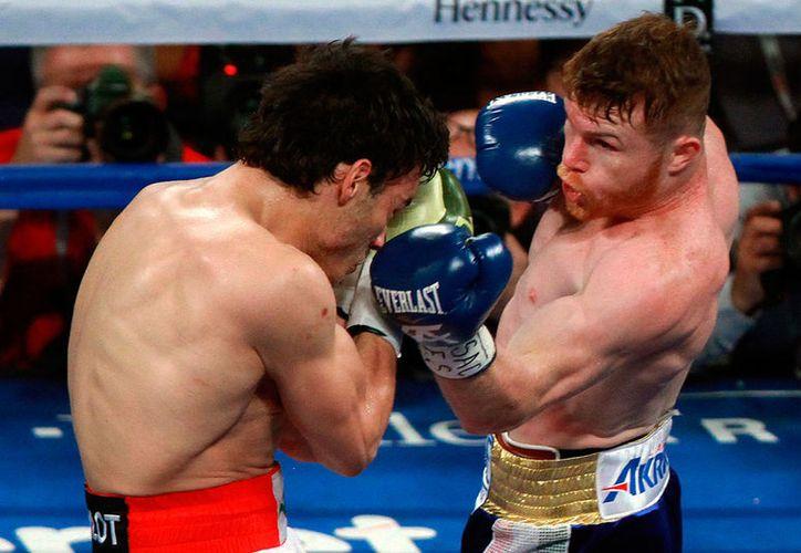 Se detectaron bajos niveles de clembuterol en el boxeador mexicano. (Jammedia)