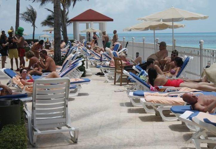 En el caso de Cancún, hubo un mayor arribo de pasaros de 2015 a 2016. (Luis Soto/SIPSE)