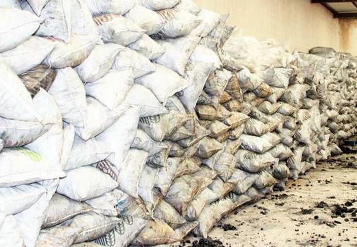 La transformación ilícita de madera es delito federal. Autoridades aseguran un total de mil 248 costales que contenían 25 toneladas 552 kilogramos de carbón vegetal. (Milenio Novedades)