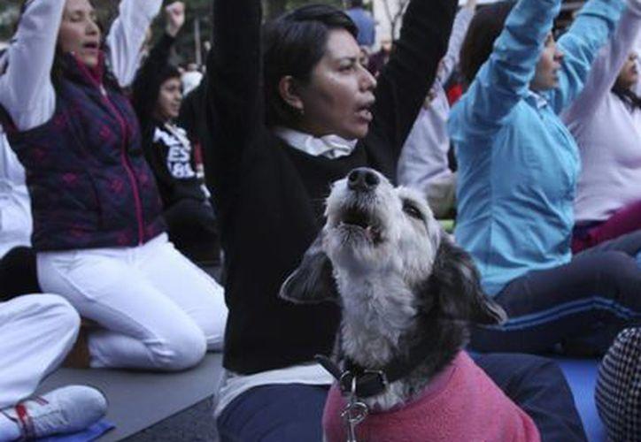 En estos días las mañanas suelen ser frías. En la imagen, una superclase de yoga este domingo en la Ciudad de México. (Agencias)