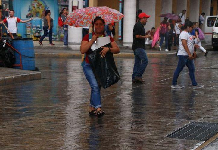 Este jueves hay probabilidad de chubascos en el norte-centro y sur de Yucatán. (José Acosta)