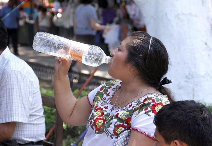 Las bebidas frescas tuvieron gran demanda por altas temperaturas. (Juan Carlos Albornoz/SIPSE)