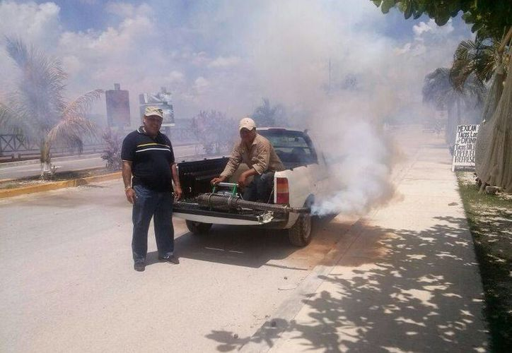 Las autoridades activaron un cerco sanitario en diversas zonas del municipio para prevenir que haya más casos de dengue.  (Rossy López/SIPSE)