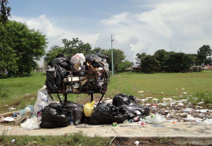 La falta de recolección de basura se ha convertido en un problema de salud. (Harold Alcocer/SIPSE)