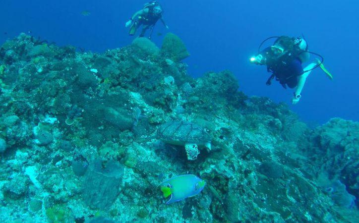 Pretenden extender la colindancia del área marina con Belice. (Luis Soto/SIPSE)