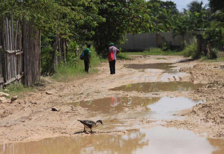 Durante las temporadas de lluvia las calles quedan intransitables y los menores sufren enfermedades respiratorias y de la piel. (Harold Alcocer/SIPSE)