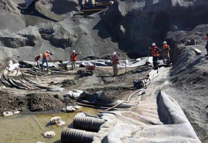 El personal inspeccionó las aguas sobre el cauce del río Piaxtla. (Internet)