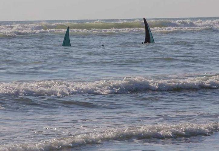 Los accidentes de botes han matado al menos a 184 musulmanes rohinyá que huyen de su país y tratan de llegar a Bangladesh. (AP)