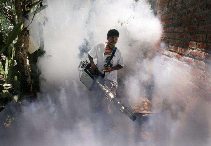 Un hombre fumiga una de las zonas de Brasil para combatir al mosquito del dengue. (Archivo/EFE)