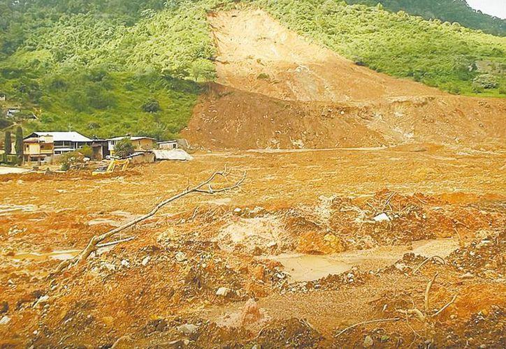 Protección visitó los 22 municipios que sufrieron mayores afectaciones por las lluvias generadas por Ingrid y Manuel. (Milenio)