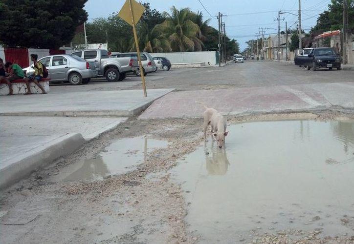 Comerciantes aledaños a la zona arqueológica de Tulum vaticinan inundaciones con la temporada de lluvias. (Sara Cauich/SIPSE)