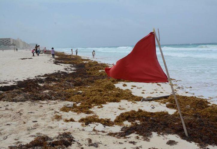 Existe una zona de disturbio, entre la costa de Belice, la Península de Yucatán y sobre el Mar Caribe. (Victoria González/SIPSE)
