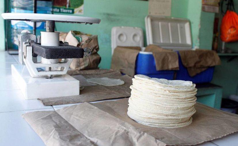 El precio del kilogramo de tortilla podría incrementar de 15.50 pesos a 16 pesos. (Enrique Mena/SIPSE)