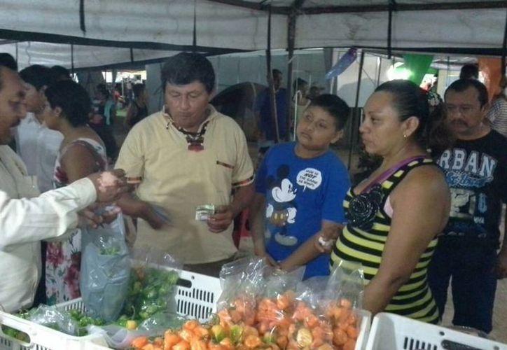 Productores de invernaderos de Felipe Carrillo Puerto venderán chile habanero a hoteles de la Riviera Maya. (Edgardo Rodríguez/SIPSE)