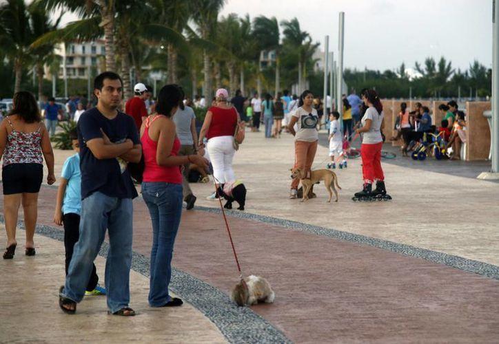 Al malecón Tajamar llegaron canes de diversas razas y tamaños, listos para realizar un poco de ejercicio. (Israel Leal/SIPSE)
