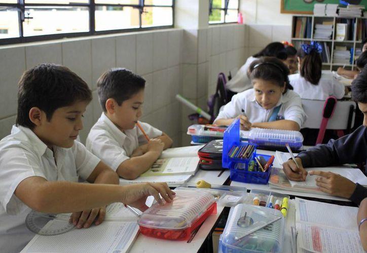 Cada año son incluidas más escuelas dentro del Programa de Tiempo Completo. Por ahora son 540. Yucatán está dentro de los 15 estados con mayor índice de escuelas que están bajo este programa. (Milenio Novedades)