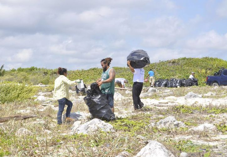 Integrantes del proyecto retiran la basura que recala de otros países a las playas, además realizan recorridos para protección de madres tortugas. (Joel Zamora/SIPSE)