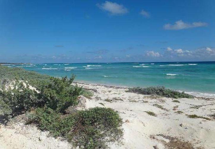 Playa Mezcalitos y Punta Sur son parte de las áreas protegidas de la isla de Cozumel.  (Foto de contexto/Internet)