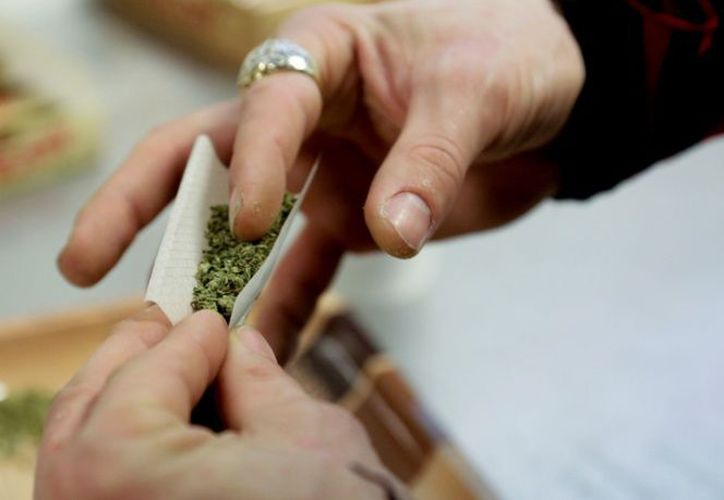 Las autoridades regulan el uso de la mariguana para adultos. (excelsior.com)