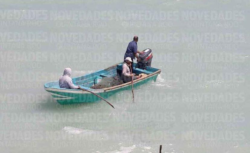 Los trabajadores pescan las especies que tienen mayor valor económico. (Luis Soto/SIPSE)