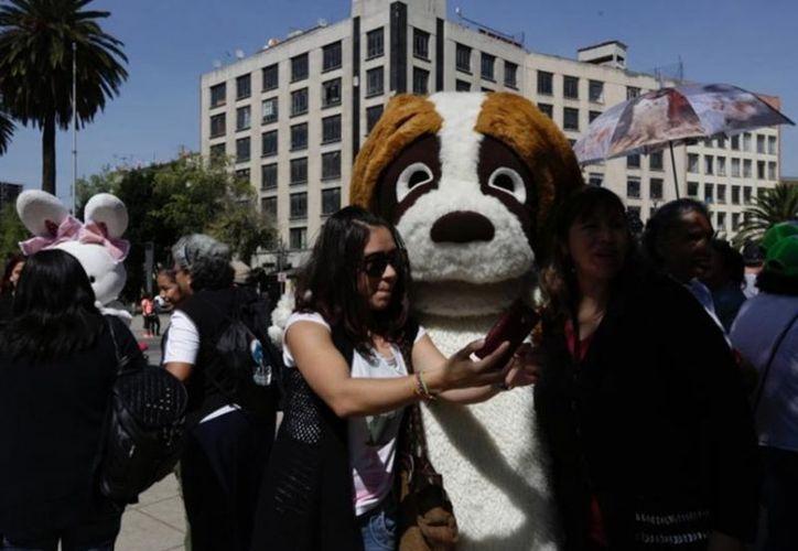 Niños y adultos se disfrazaron de animales durante la manifestación. (vanguardia.com)