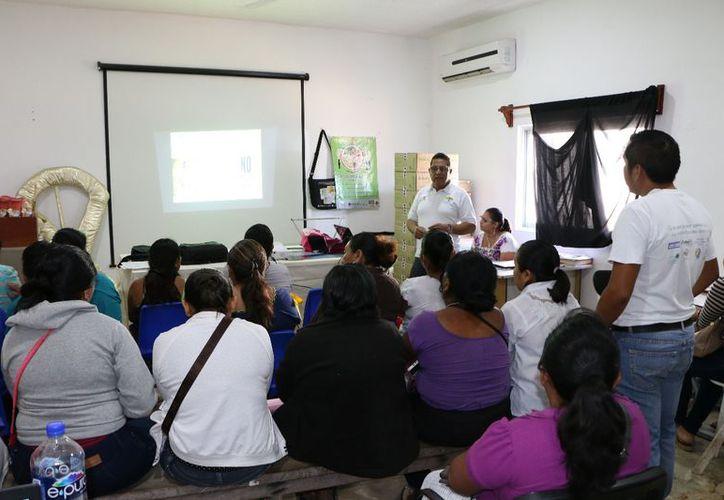 En la sala de juntas del Ayuntamiento se realizaron pláticas sobre el cuidado de las mascotas. (Raúl Balam/SIPSE)