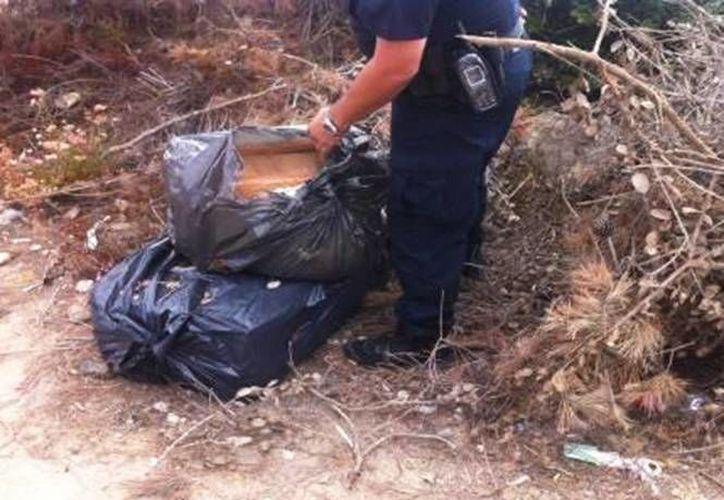 Los federales hallaron 55 kilos de marihuana en la zona cercana a la pista del narco en Ensenada, Baja California. (Foto especial tomada de excelsior.com.mx)