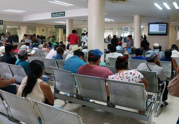 Legisladores yucatecos llamaron a valorar una declaratoria de epidemia. (José Acosta/Milenio Novedades)