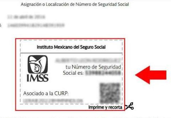El número es la identidad social del trabajador que cotiza en el IMSS. (Foto: MSN.com)