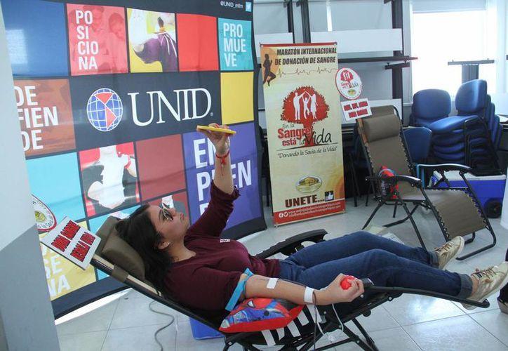 La Embajada Mundial de Activistas por la Paz (Emap), la Universidad Interamericana para el Desarrollo (Unid) y el Centro Estatal de Transfusión Sanguínea (Cets) promueven la donación de sangre entre universitarios. (Jorge Acosta/SIPSE)