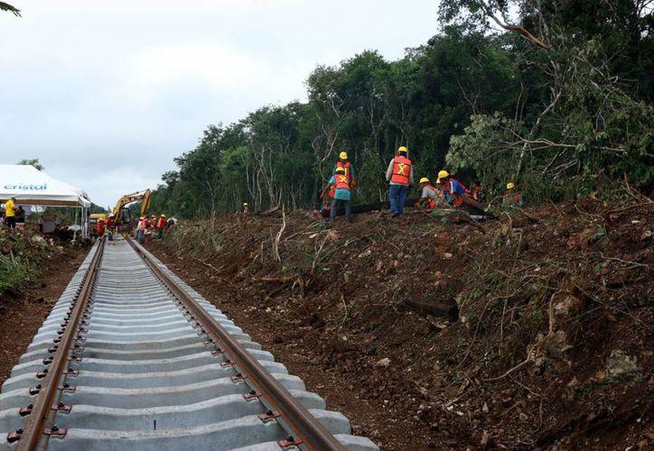 Van a  buen ritmo las obras de las vías del tren Mérida-Coatzcoalcos. Imagen de las vías en reparación. (Milenio Novedades)