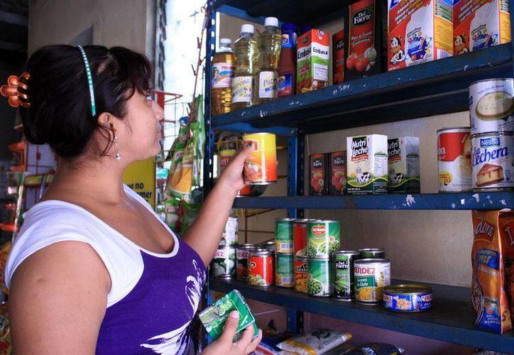 El programa de Eco Créditos del Fide va dirigido micro y pequeñas empresas, el financiamiento es de hasta 350 mil pesos y se paga mediante el recibo de luz. (SISPE)