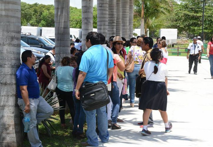 Los profesores quieren entregar un documento con 800 firmas que recabaron desde el lunes pasado. (Victoria González/SIPSE)