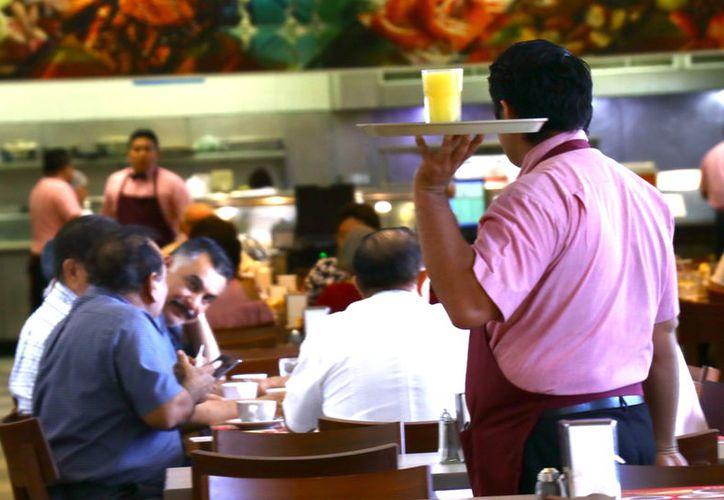 Muchos restaurantes sustituyen ingredientes convencionales por orgánicos. (Foto: Jorge Acosta/ Milenio Novedades)