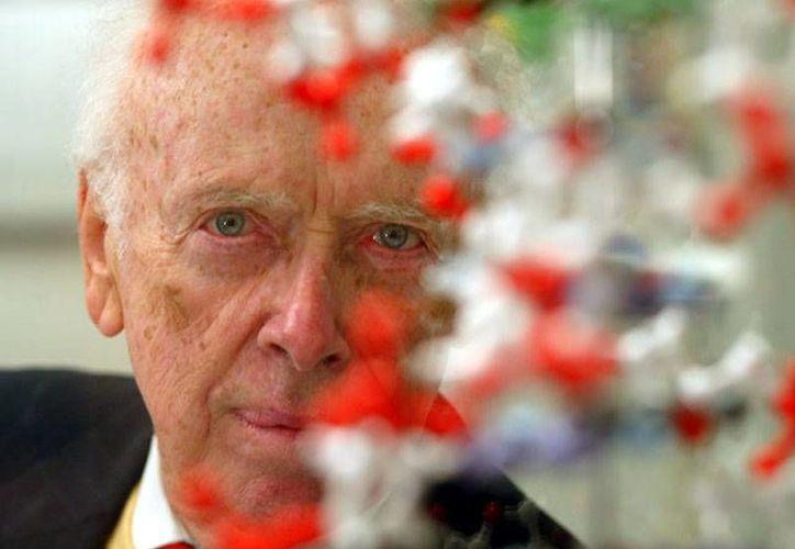 Francis Crick, James Watson (foto) y  Maurice Wilkins recibieron el Nobel de Medicina en 1962 por haber descubierto el ADN. (news.yahoo.com)