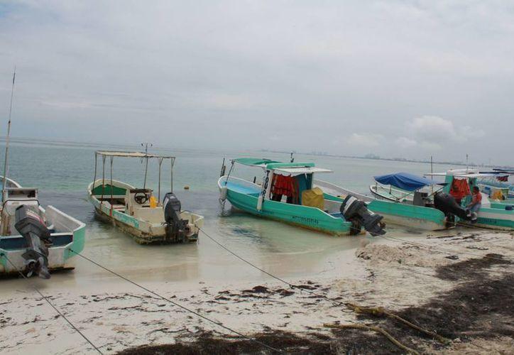 En Yucatán, el gobierno ofrece ayuda a los hombres de mar cuando su principal producto entra en etapa de reproducción.  (Luis Soto/SIPSE )