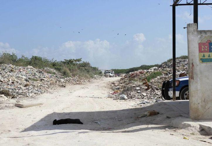 La gasificación será la nueva tecnología que se usará para el saneamiento del basurero de Othón P. Blanco. (Harold Alcocer/SIPSE)