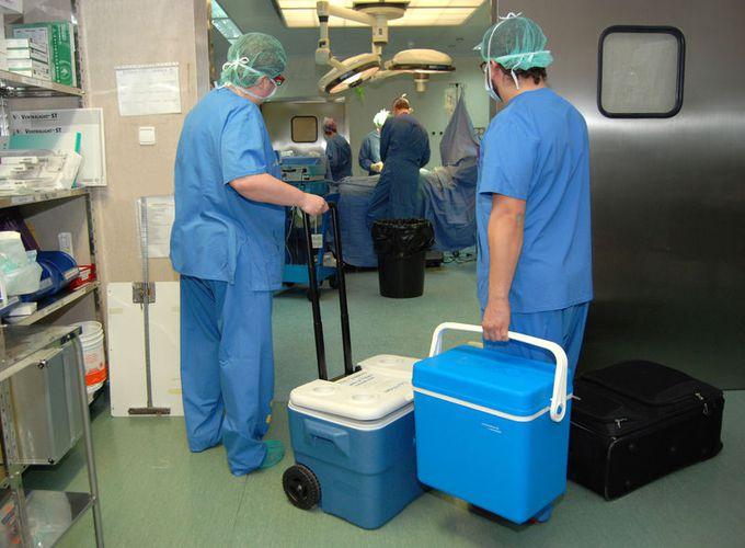 Holanda aprueba una ley que convierte a todos sus ciudadanos en donantes de órganos