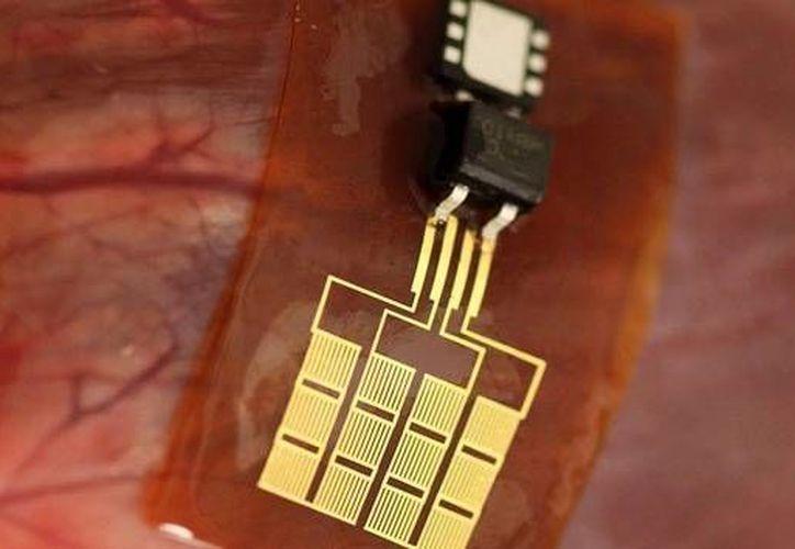 Científicos pretenden que algún día el invento para recargar objetos se aplique en seres humanos. (midwestern.edu)
